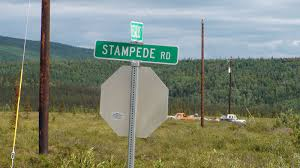 chris mccandless now i walk into the wild pictures christophper road sign for stampede road and the stampede trail