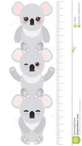 Cute Growth Chart Koala Children Height Meter Wall Sticker Kids Stock Vector