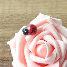 decor kid toys diy ladybird ladybug