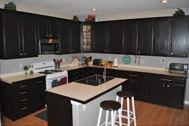 restain kitchen cabinets black