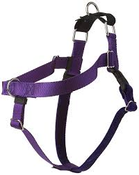 2 Hounds Design 2 Hounds Design Freedom No Pull No Leash Harness Only 1 Inch Large