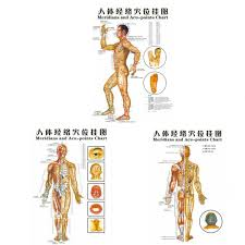 Details About 1pcs Chinese Medicine Body Acupuncture Points Meridians And Acupoints Map Chart