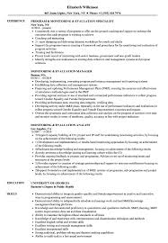 Ict Specialist Sample Resume Monitoring Evaluation Resume Samples Velvet Jobs 24