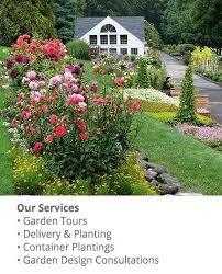 visit white flower farm plant nursery