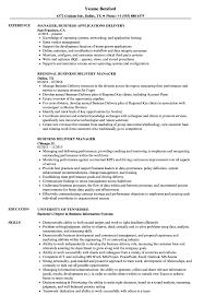 Business Delivery Manager Resume Samples Velvet Jobs
