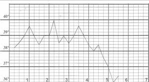 A Typical Temperature Chart During A Fever Attack