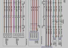 27 images radio wiring diagram vt commodore vx stereo chunyan me Wiring Diagram Symbols at Vx Commodore Wiring Diagram Pdf