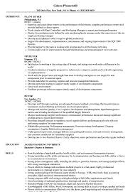 Buyer Sample Resume Buyer Resume Samples Velvet Jobs 12
