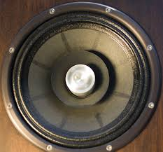 yes woofer it s sold as a full range driver that acts as a single point source so that it seems like all of the sound is coming from it but that s not