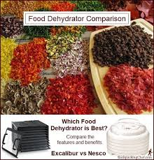 which food dehydrator is best
