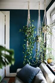 informal green wall indoors. Love The Contrast Against Wall Colour, And Way Hanging Planters Draping Plants Add A Vertical Element To Room. (AMC) Informal Green Indoors