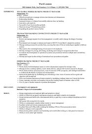Product Manager Resume Sample Product Manager Banking Resume Samples Velvet Jobs 29