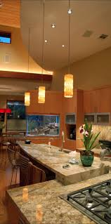 tank furniture. View In Gallery Aquarium Built Into Kitchen Cupboards And Countertop Tank Furniture