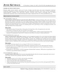 Account Manager Job Description For Resume Resume For Your Job