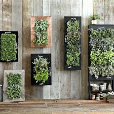 and small spaces wall mounted planters mounted planters wall mounted indoor herb planters hanging wall plant indoor wall mounted planters outdoor diy