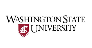 Clinical Assistant Jobs Clinical Assistant Professor At Washington State University Oya