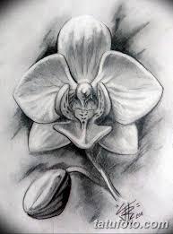 черно белый эскиз тату рисункок орхидея 11032019 003 Tattoo