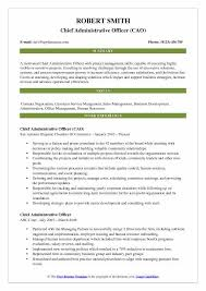 Project Officer Cv Chief Administrative Officer Resume Samples Qwikresume