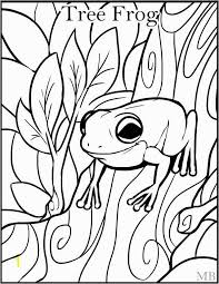 tree frog template frog craft preschool inspirational coloring pages tree frogs