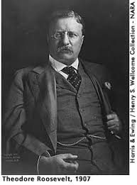 how to write a strong personal theodore roosevelt essay explain why theodore roosevelt is important and what he represents about american history and american identity