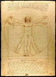 Le nombre d'or de Léonard de Vinci : la proportion divine qui fascine  toujours - ESILV Ecole d'Ingénieurs