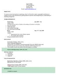 Resume Template For Word Inspiration CV Template Free Professional Resume Templates Word Open Colleges