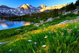 Spring Mountain Landscape Images