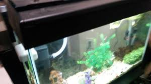 maxresdefault diy fish tank wet dry tower filter