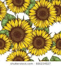 Sunflower Pattern Impressive Sunflower Pattern Images Stock Photos Vectors Shutterstock