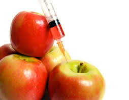genetically modified foods should we or shouldn t we the  labeling