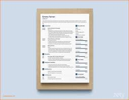 Resume Zety 27 New Resume Puter Skills Examples Resume Templates