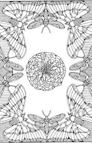 Detailed Butterfly Coloring Pages New Butterfly Flower Coloring