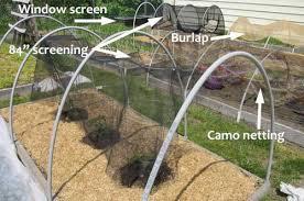 garden shade cloth. Garden Shade Cloth Vegetable Ideas H