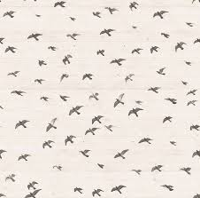 vintage bird wallpaper tumblr. Delighful Tumblr Bird Background And Wallpaper Image With Vintage Bird Wallpaper Tumblr W