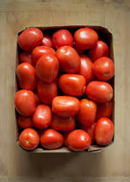 image of tomatoes के लिए इमेज परिणाम