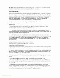 Example Of Nanny Resumes Sample Nanny Resume Format A For Students Examples Of