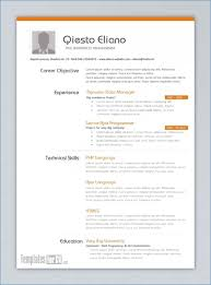 Free Creative Resume Templates For Mac Pages Resume Layout Com