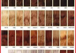 Alter Ego Permanent Hair Color Chart Bedowntowndaytona Com
