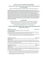 Resume Examples Sales Advertising Resume Profile Examples Sales