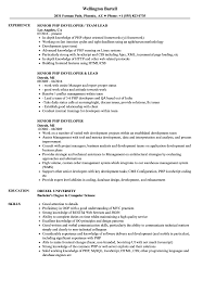 Senior Php Developer Resume Samples Velvet Jobs