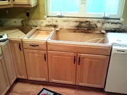 black mold in kitchen cabinets mold black mould behind kitchen cupboardsmold under sink finest mold under