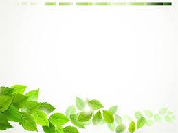 A Set Of Green Leaf Ppt Background Images The Best Ppt Backgrounds