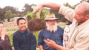 Episode 7 - Darren Aitken - Vortex Veggies — The Hungry Gardener