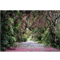 <b>Фотообои</b> бумажные <b>Komar Wicklow</b> Park 8-985 3,68х2,54 м ...