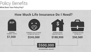 sample 500 000 life insurance rates post