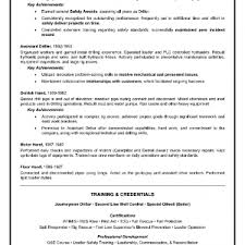 resume headline samples template example resume headline samples divine sample resume headline examples free blank resume headline samples