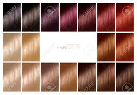 Sample Hair Colors Chart Color Chart For Hair Dye Hair Color Palette With A Wide Range