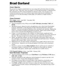 Resume Cv Executive Sample Valid Summary Resumes Examples Strong ...