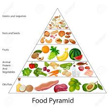 Food Group Pyramid Chart Education Chart Of Food Pyramid Diagram