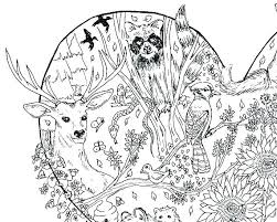Free Printable Coloring Pages For Adults Only Pdf Advanced Flowers